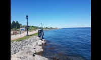 Edge of St Lawrence River